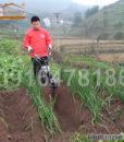 May-xoi-dat-len-luong-d3